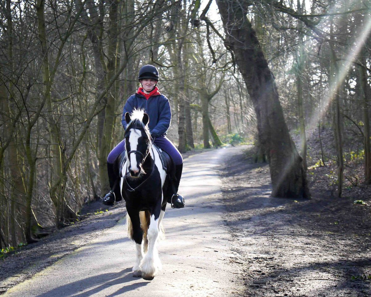 Fun times ~ Hacking out in the winter sun