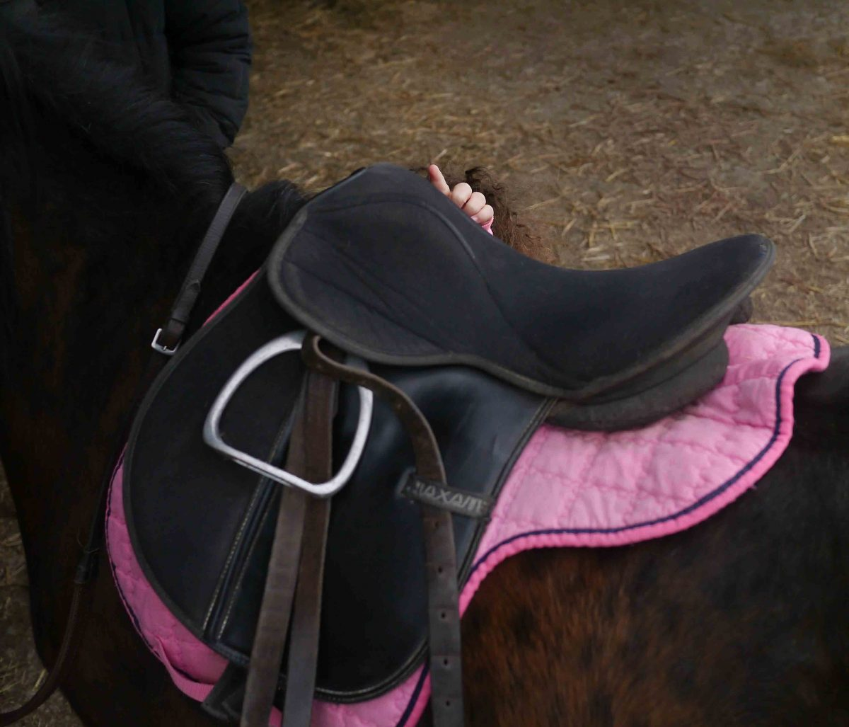 Sorting out the saddle